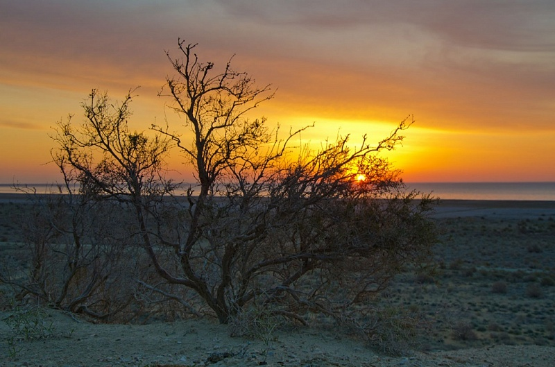 Aral Sea Sunset